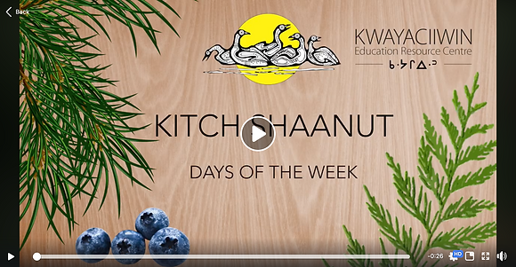 Kitch Shaanut Videos