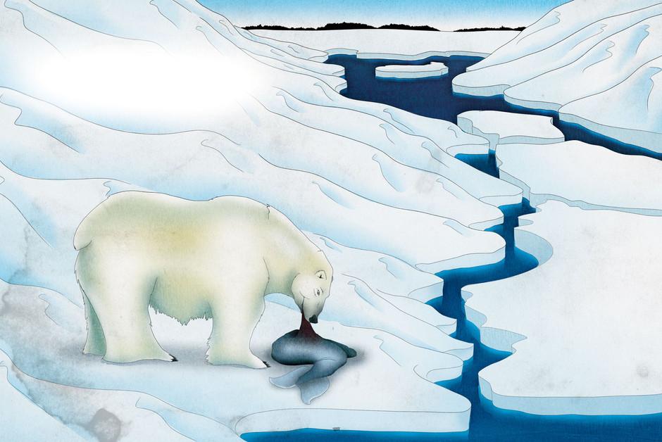 eating-polar-bear-v2.jpg