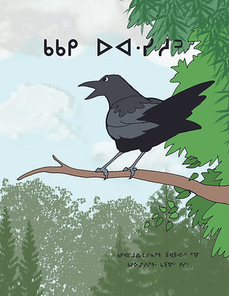 Crows Nest - Oji-Cree Syllabics