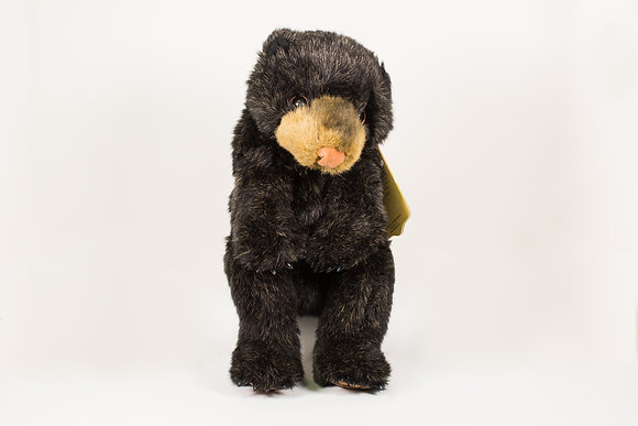 Black Bear Cub Hand Puppet