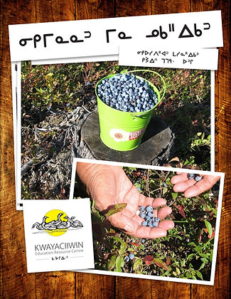 Blueberry and Fish Flakes (Pemmican) (OjiCree Syllabics)