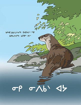 Otter in the Water - Oji-Cree Syllabics