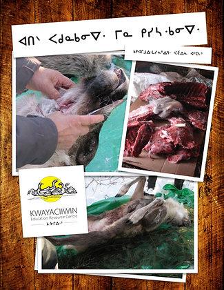 Cleaning Caribou (OjiCree Syllabics)