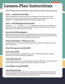 Loon Lesson Plan.jpg
