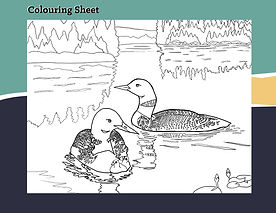 ColouringSheet2.jpg