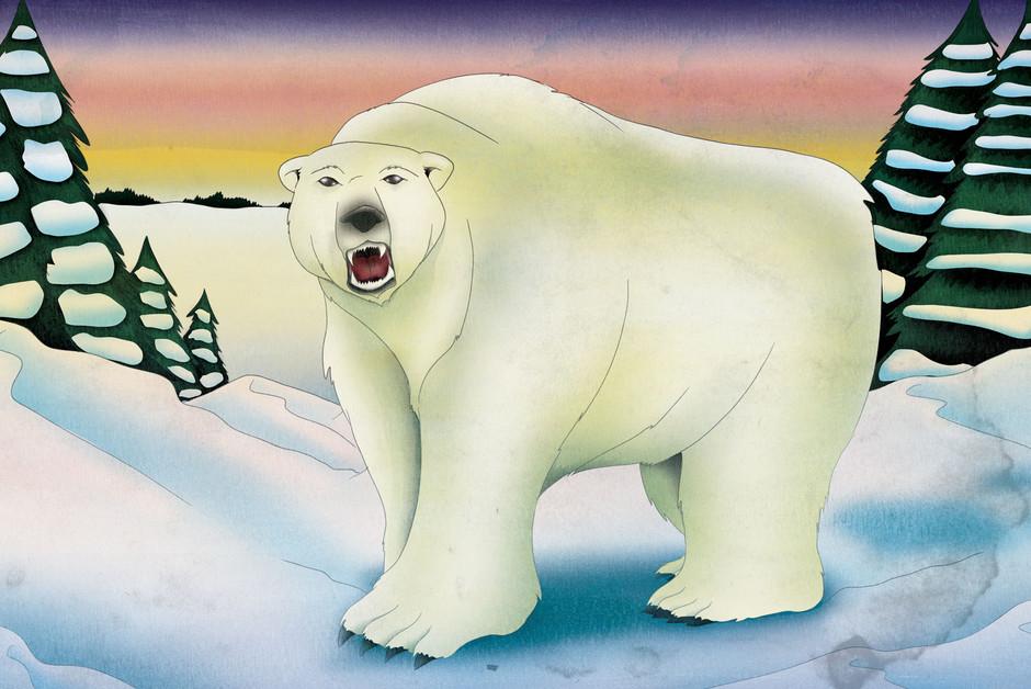 predator-bear.jpg