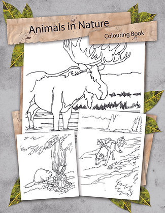 Animals in Nature Colouring Book