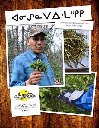 Picking Willow (OjiCree Syllabics)