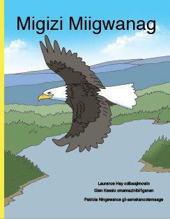 Eagle Feathers - Ojibwe
