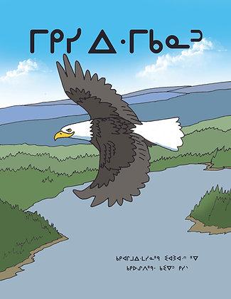 Eagle Feathers - Oji-Cree Syllabics