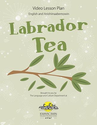 Labrador Tea Lesson Plan