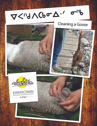 Cleaning a Goose - Cree