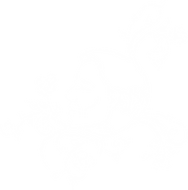 Elder'ssymposium-logo.png
