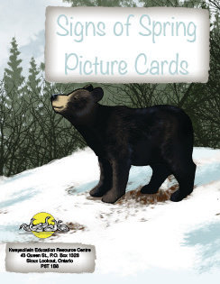 Signs of Spring Flashcards