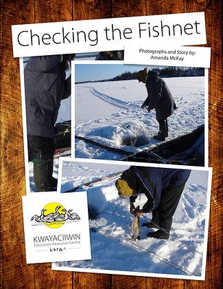 Checking the Fishnet