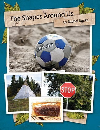 The Shapes Around Us