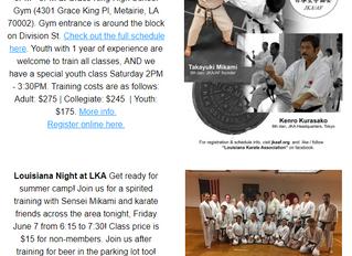 Dojo News: 10th Annual Summer Camp Next Week