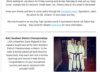Dojo News: All South Karate Championships Next Saturday!!