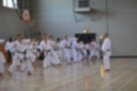 Sensei Mikami teaching Lafayette Karate Training Camp