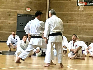 Stances: The Foundation of Karate Techniques