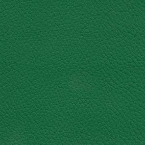 Jewel Green