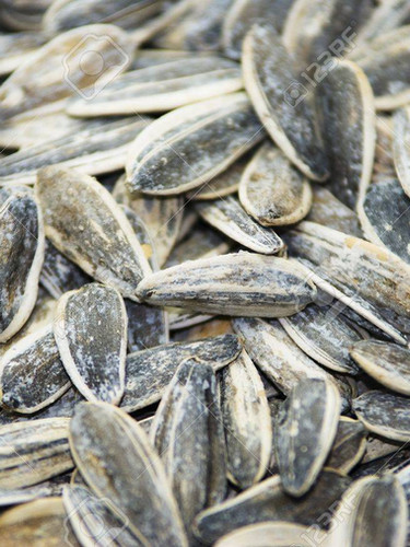 Roasted and Salted Sunflower seeds.jpg