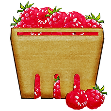 Watercolor-Fruit-Basket-Of-Fruit-Bowl-Of