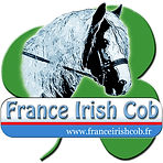 logo_france_irish_cob 2019.jpg