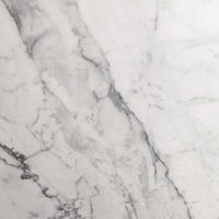 statuario polished stone paver with black marble veins