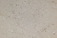 paver stone paver with mottled marble flecks