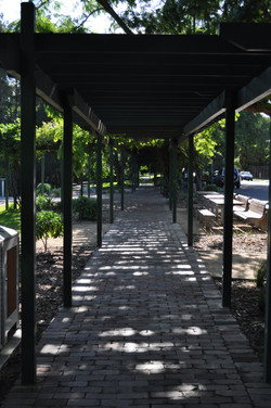 Richmond publick park and pergola