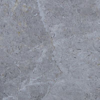 Honed stone square paver with a faded veined look