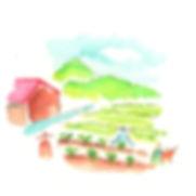 野菜づくり04.jpg