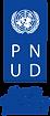 PNUD_tag-AZUL.png