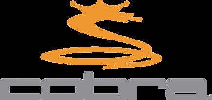 logo-cobra-puma-golf-full-color-700x330.