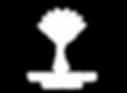 Logo_W4G_White.png