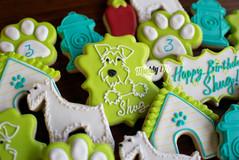 Puppy Birthday Maddy Ds 5.27.2020 3.jpg