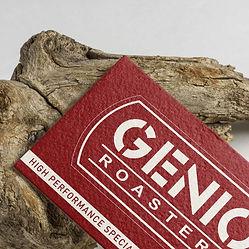 Genio-6.jpg
