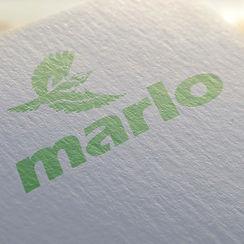 Marlo-24.jpg