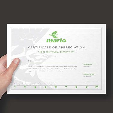 Marlo-38.jpg