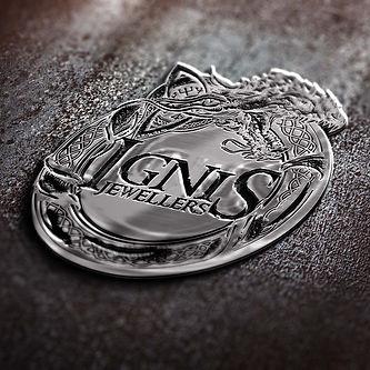 IGNIS logo 1.jpg
