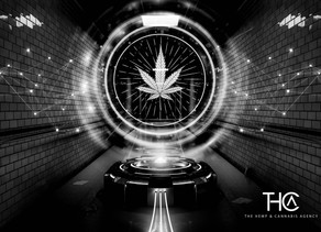 CBD Online Marketing What You Need To Know
