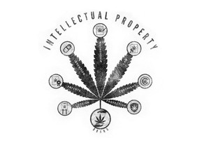 Is Your Hemp & Cannabis Business and Products Protected?