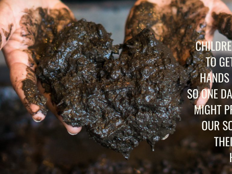 Ok so we have all heard the news by now: Soil is amazing - but why?