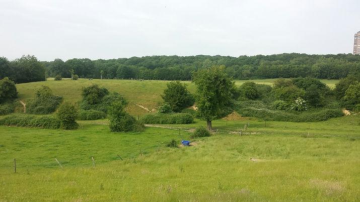 Agrarisch Natuurbeheer 2.jpg