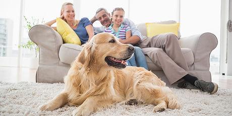 familia-perro.jpg