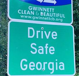 DSG_Adopt_Highway_Close.jpg