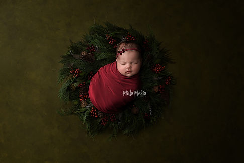 newborn_mini.jpg