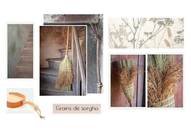 Grains de sorgho.jpg