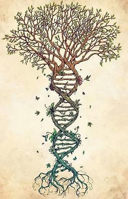 фото-тату-древо-жизни-от-09.01.2018-№007-tattoo-tree-of-life-tattoo-photo.ru_.jpg